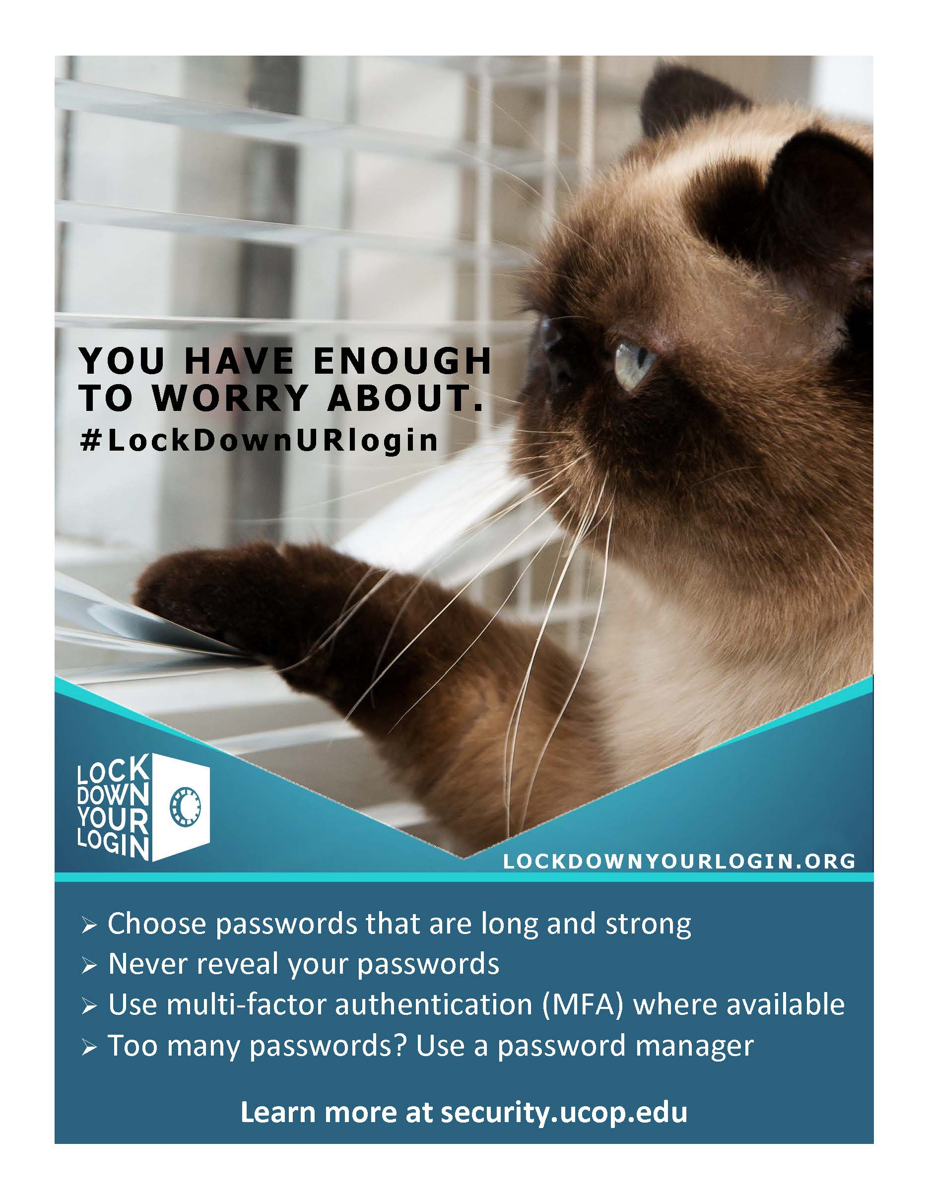 Poster thumbnail: Lock Down Your Login #1. Click for PDF.