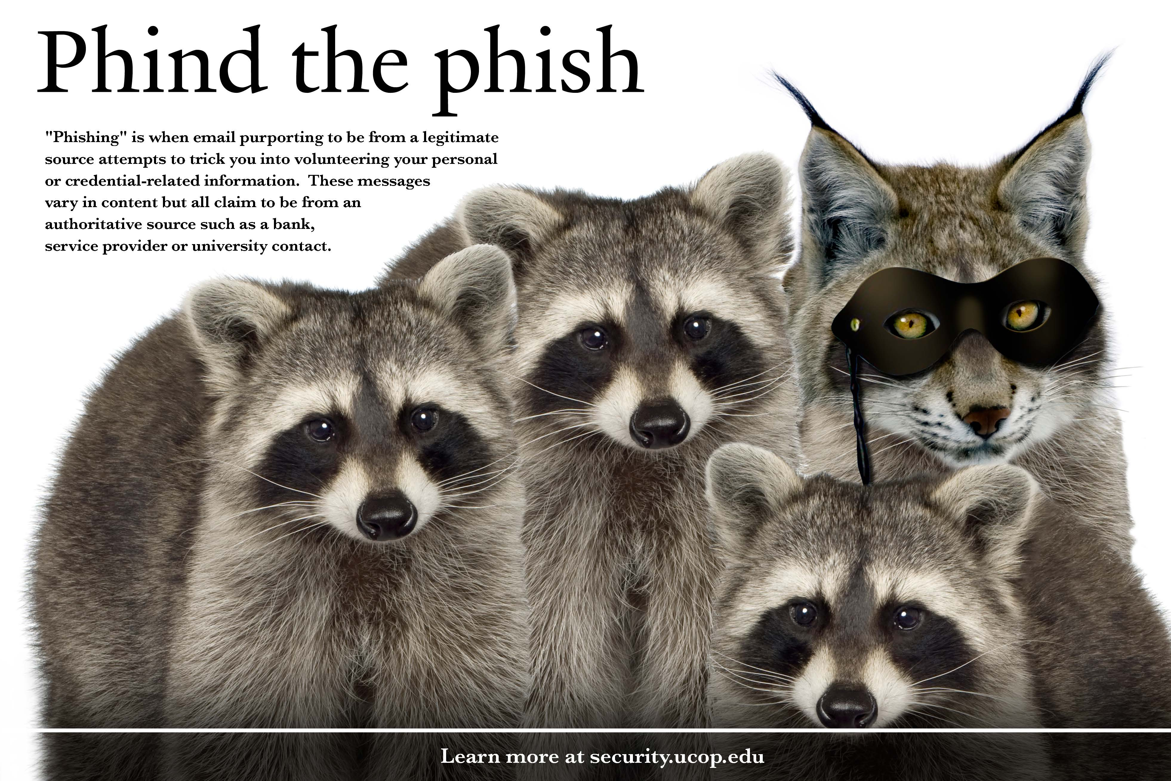 Flyer: Phind the phish. -  Racoon Bobcat